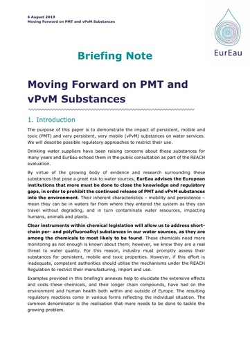 Briefing note on Moving Forward on PMT and vPvM Substances